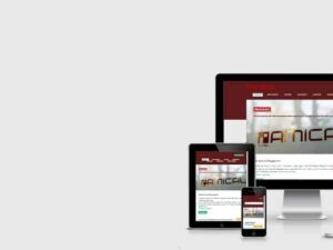 Mobile-Friendly Test – Responsive Webdesign – GOOGLE